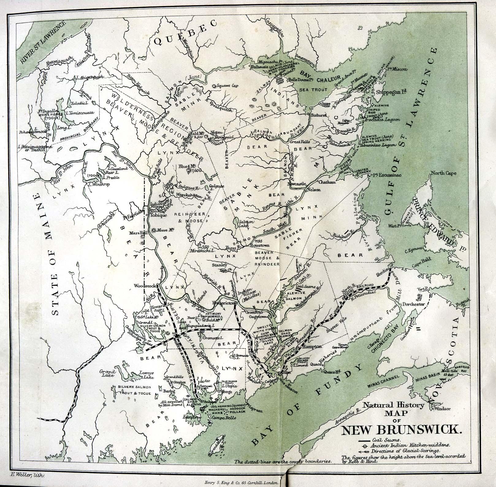 Map Of Canada In 1873.New Brunswick 1873 Atlantic Canada Maps Maps Cka