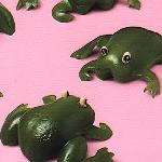 Frogs..