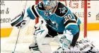 Two goals by Cheechoo spurs Shark win