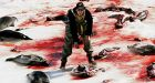 Scientists defend seal hunt