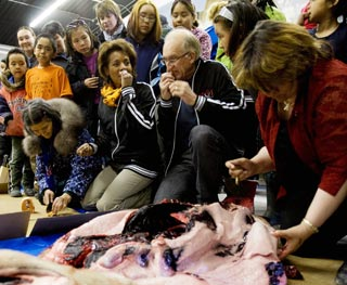 Gov. Gen's show of solidarity for seal hunt offensive: animal rights group