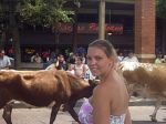 Wife and Cows